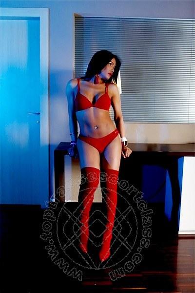 Aisha Morello  VERONA 3281023381
